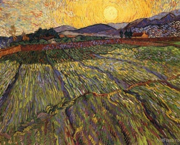 Van Gogh - rasaritul soarelui